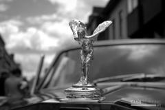 Flying_Lady